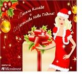 Весела Коледа и щастлива Нова година от Microinvest
